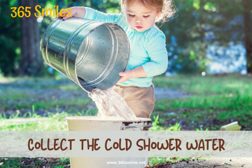 Collect cold shower water while you wait